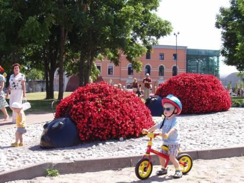 фото Латвия Рига
