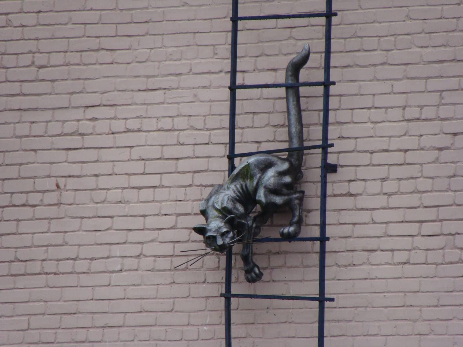 Смотреть фото Фигура кота на стене дома в Парвенте